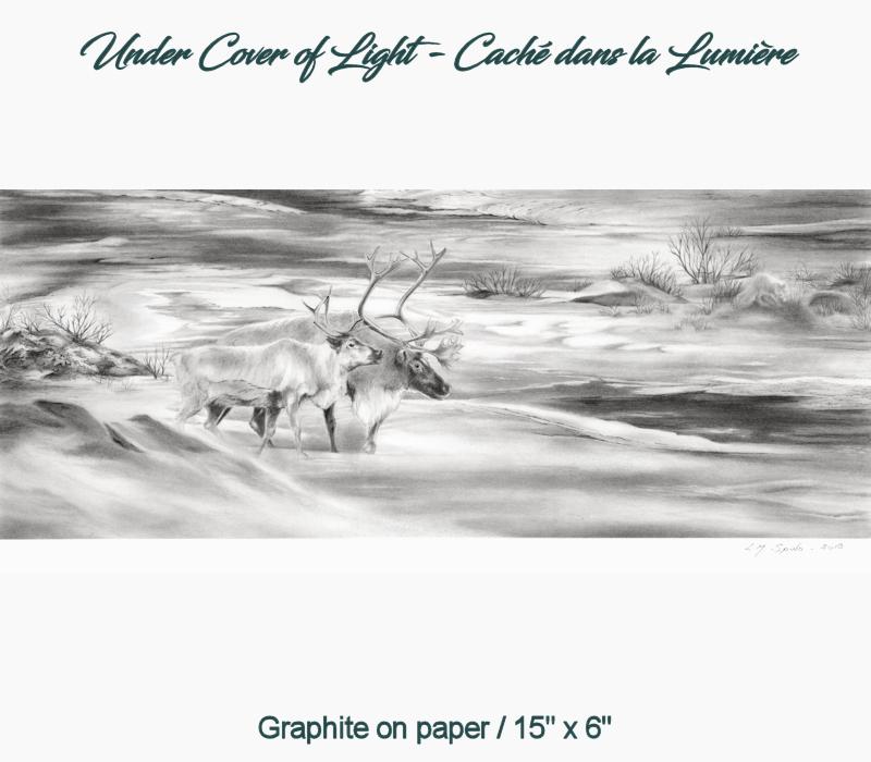 Under Cover of Light - Caché dans la Lumière