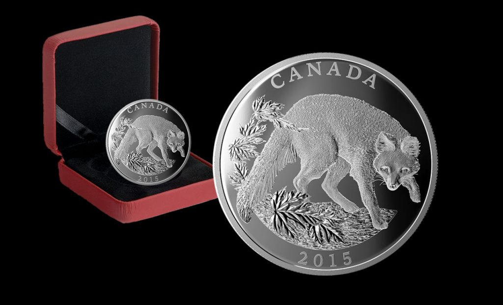 canadian-2015-125-grey-fox-silver-coin-montage