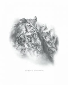 LSpino _Great Horned Owl